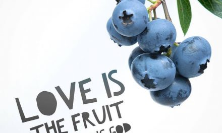 Fruit of Trusting God